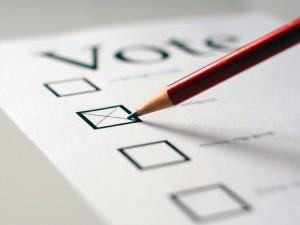 Voting02