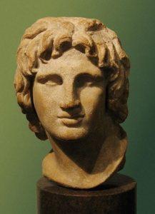 Alexander22