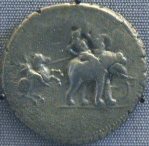 Alexander48