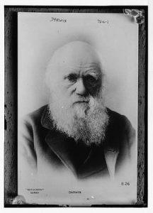 Darwin05