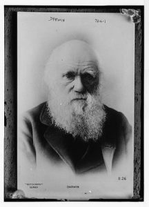 Darwin06