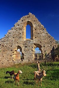 The Frankish monastery of Isova, at Trypiti village (Andritsaina-Krestena Municipality), Ileia, Peloponnese, Greece.