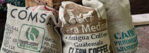 coffeebean03