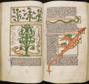 medievalmonsters01