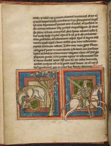medievalmonsters24