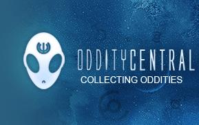 odditycentral01