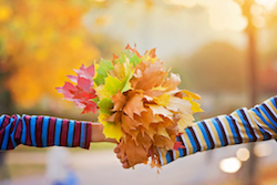 Bouquet of autumn red and orange leaves in child hand