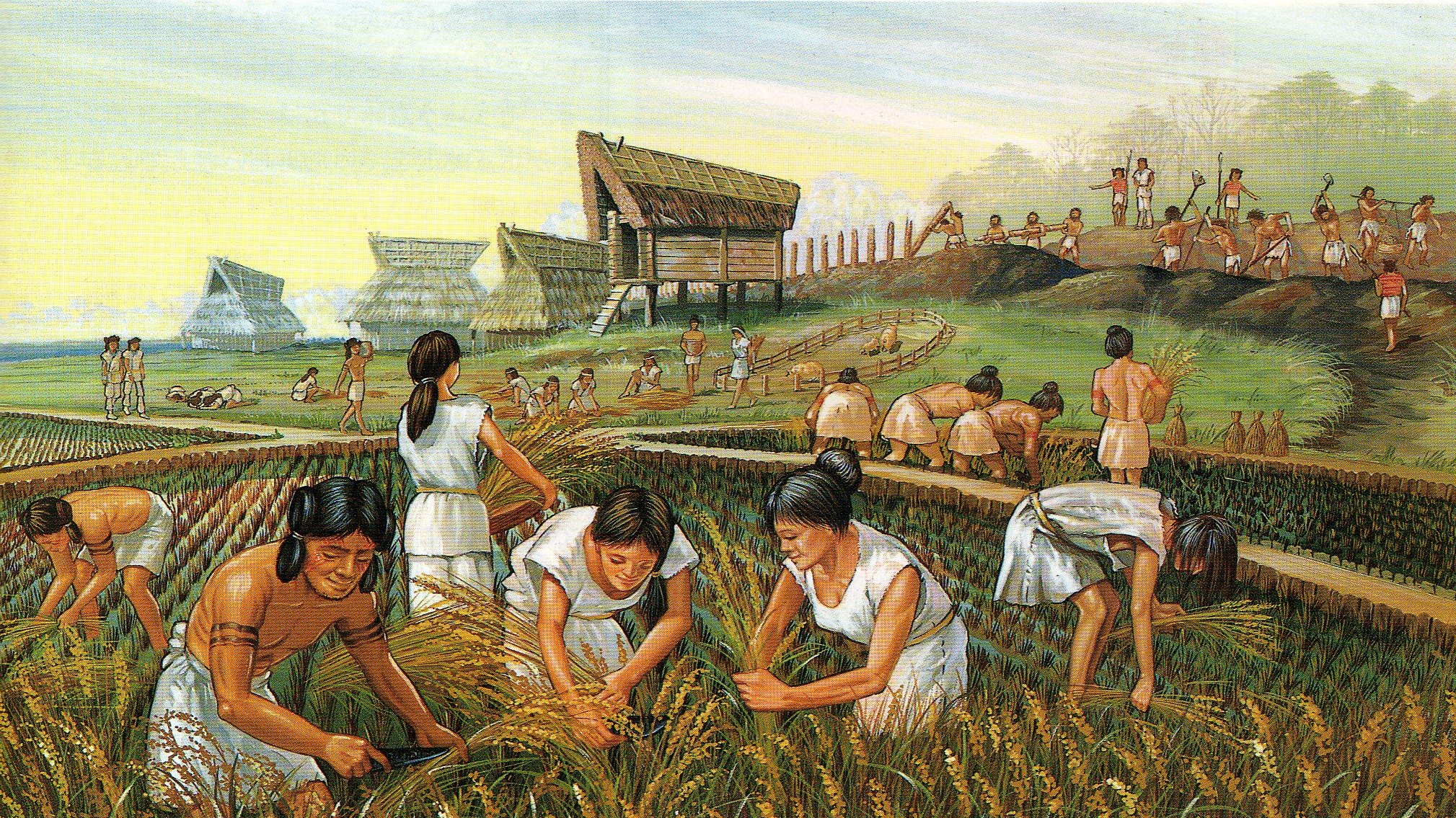 Questions About the Agricultural Revolution