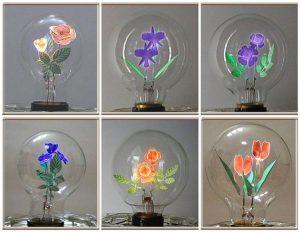 bulbs03