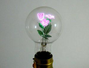 bulbs05