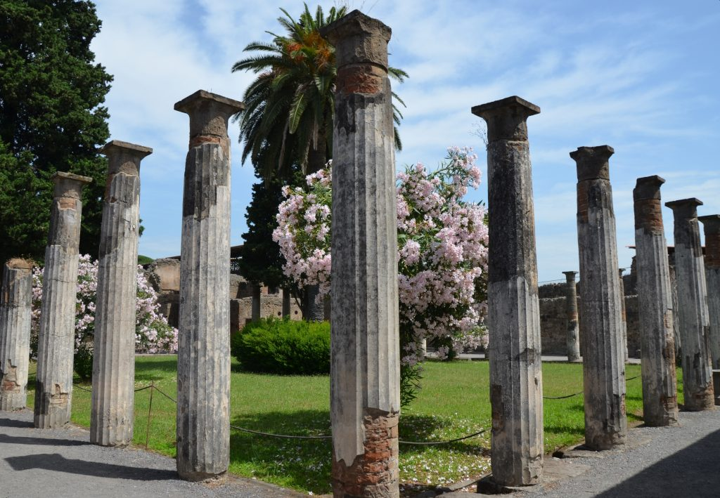 an essay on the house of the faun pompeii The roman house earning a living house of the faun reg vi, ins 15 have led to the range of house styles we see in pompeii and herculaneum today.