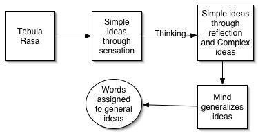 Sensation and perception essay ideas