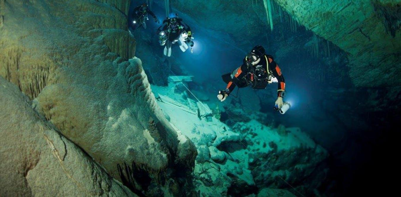 Marine Biologist Colleges In Texas | Marine World