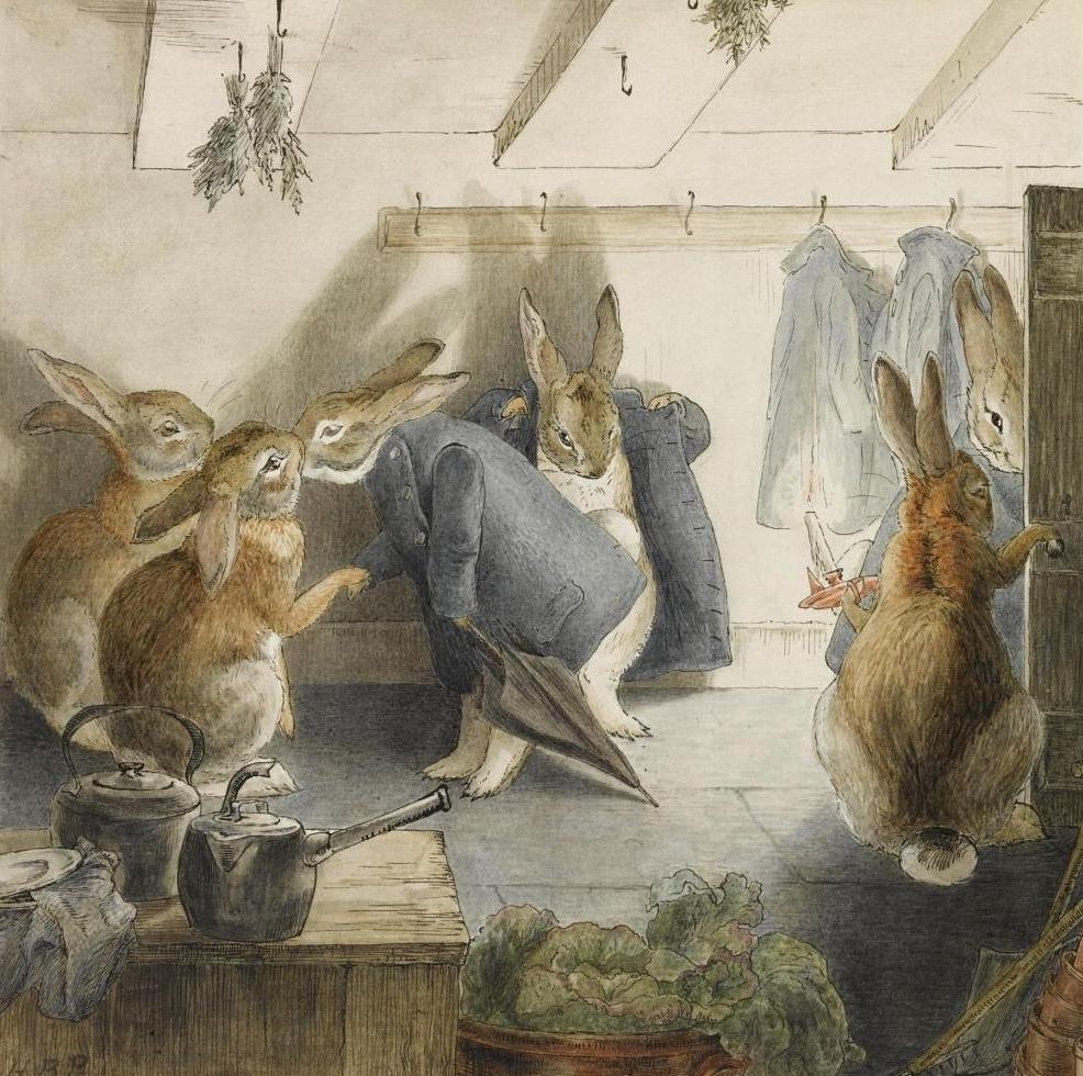 Rabbit And Pea Cat Food