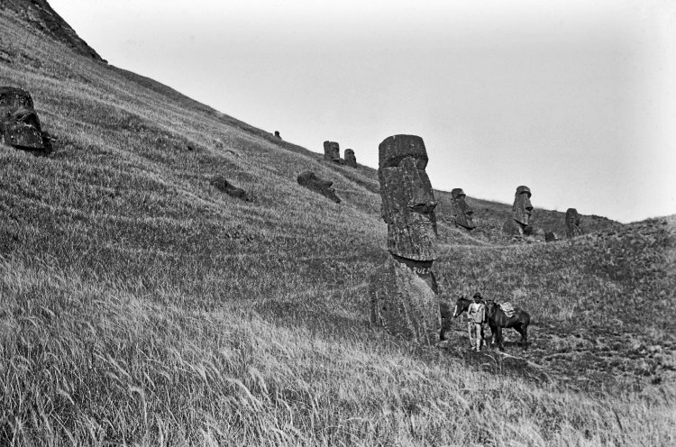 Easter Island Heads Quarry