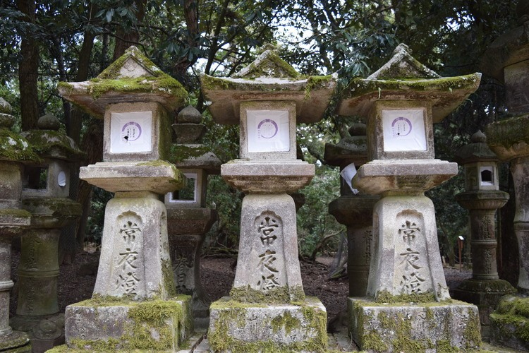A History of Natural Balance in Japanese Shinto Architecture