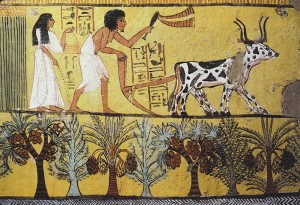 Egypt06