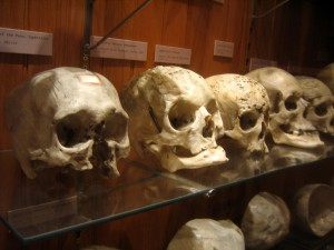 Museums01