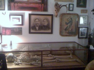 Morbid Anatomy Museum. Photo: thera T / Flickr [CC]