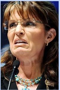 Palin03