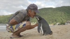 Penguin01