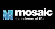 Mosaic08