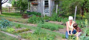 Farms01