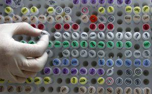 GeneticEngineering03
