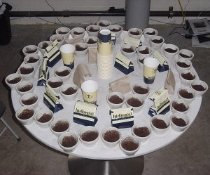 cupping07