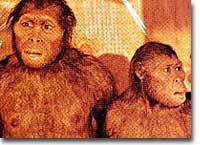 prehistory03