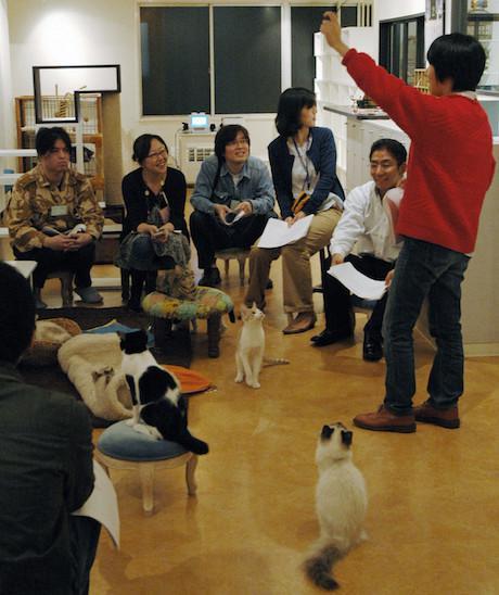 Matchmaking café Tokyo