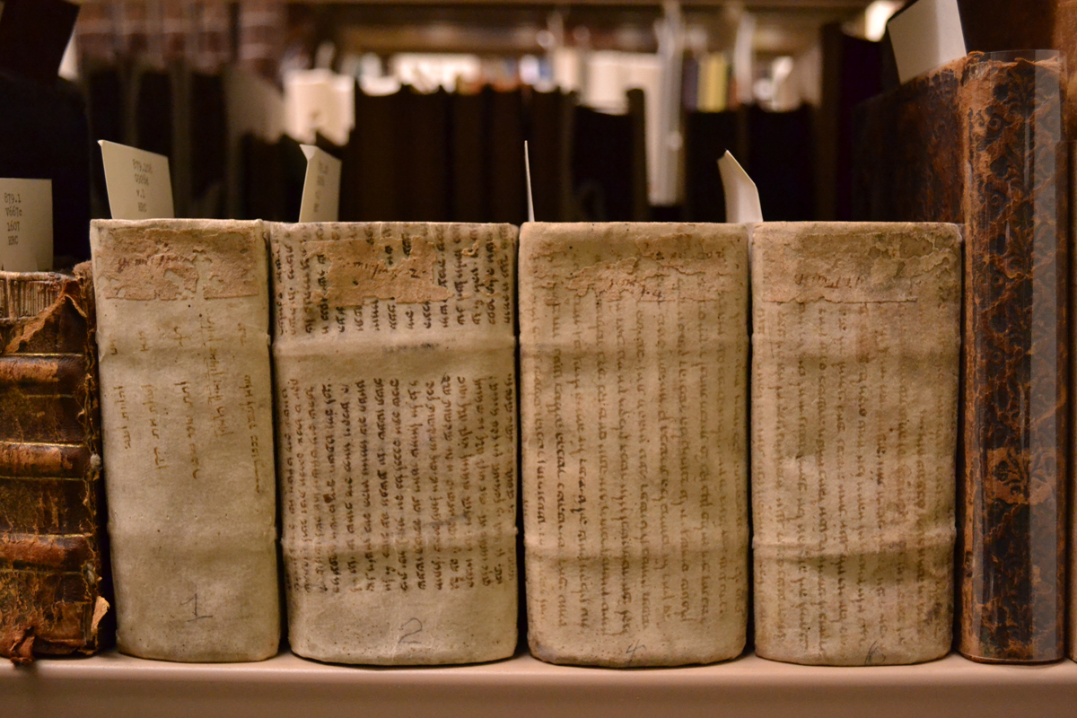 patterns of desire in medieval and early modern manuscripts and books