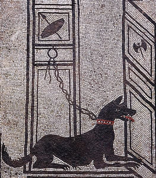 Domestication and Contribution of Dogs in the Ancient World