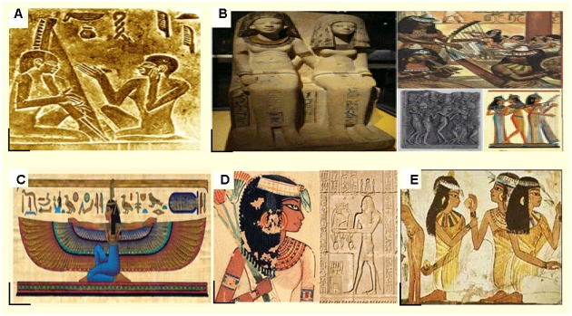 The Roles Of Women In Ancient Egypt-3724