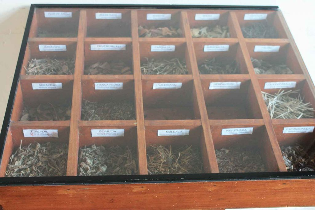 Curandero: Peruvian Shamans and Nature's Medicine Cabinet