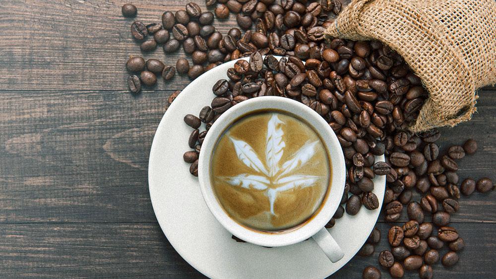 marijuana in coffee
